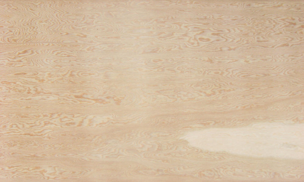 doug fir plywood